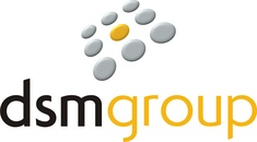 DSM Group Ltd