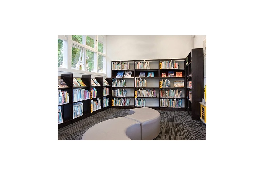 Lundia libraries for school
