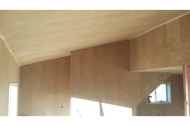 Triboard Lining and TGV Panels